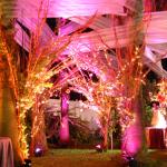 decoracion para bodas al aire libre